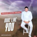 Ambassador Chinonso Princewill - None Like You