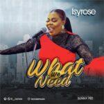 MP3 + LYRICS: WHAT WE NEED - ISYROSE